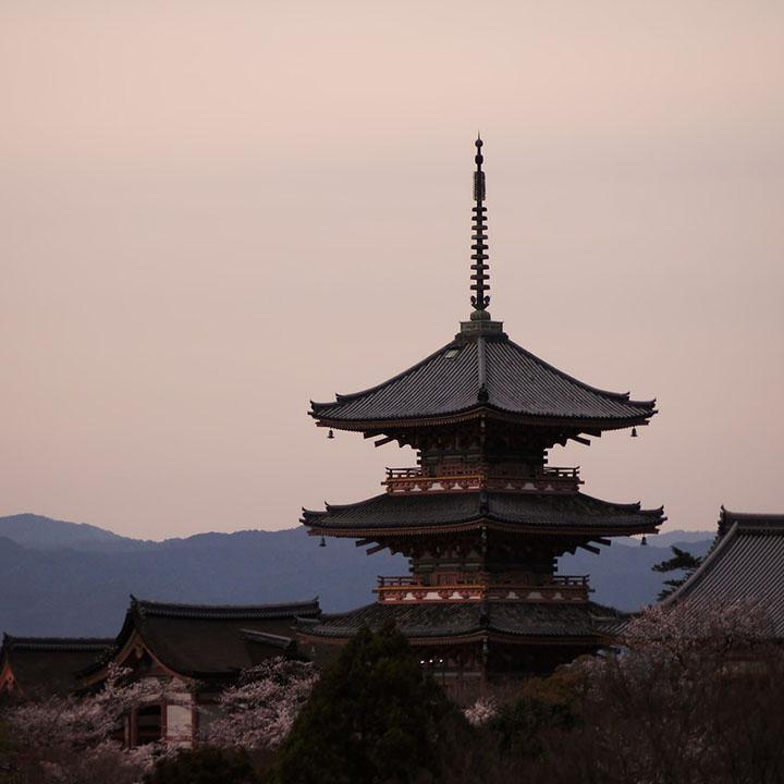 サポートも手厚い!京都に移住しよう